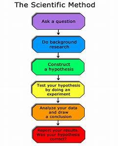 Information: The Scientific Method
