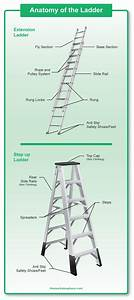 Parts Of A Ladder  Diagrams For Step And Extension Ladders