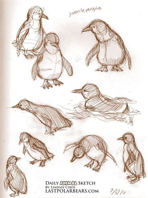 skizze pinguin stift spitzen und los geht es