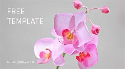 how to make orchids bloom how to make orchid paper flower from printer paper free template