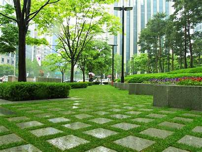 Walkway Park Posco Grass Backgrounds Parks Wallpapers