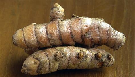 comment cuisiner le gingembre frais cuisiner le curcuma frais nos conseils pour bien le cuisine