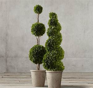 Topiary Style: a Dash of Manicured Charm
