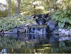 Water Garden Water Garden Water Garden Houston Houston Water Gardens Water