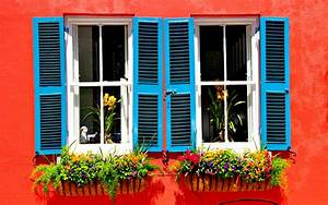 Window Decisions For Your House Build - BeautyHarmonyLife