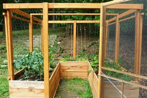 Vertical Square Foot Gardening by Enclosed Raised Bed Garden Deer Proof Square Foot