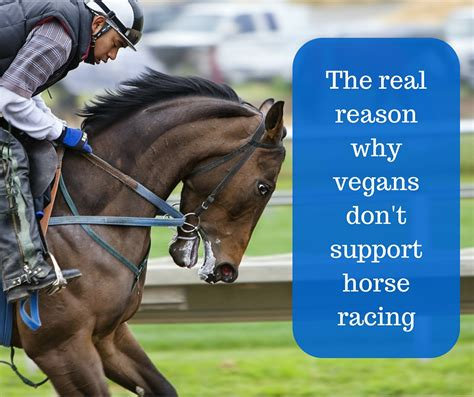 racing horse why vegans reason support don mildly abused distressing contains horses graphic