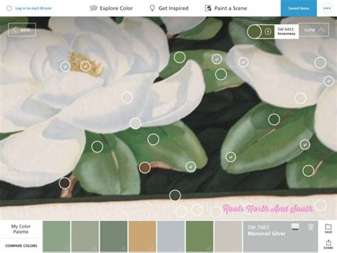 matching paint colors is a snap roots south