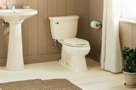 Pedestal Sinks Home Depot Canada by Home Depot Bathroom Home Depot Bathroom Designs Homesfeed