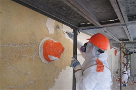 Environmental Remediation Services: Demolition