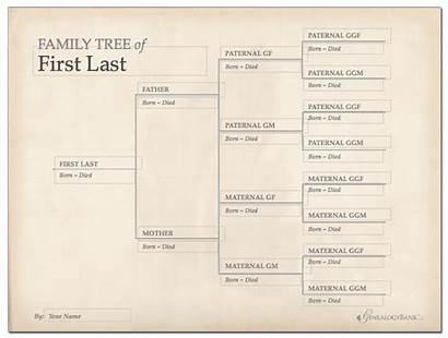 Tree Template Printable Chart Editable Genealogybank Genealogy