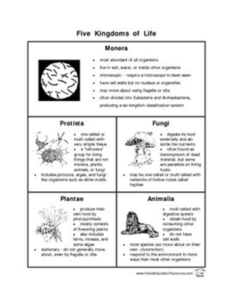 13 Best Images Of The Kingdoms Of Life Worksheet  Animal Kingdom Classification Worksheet, Six