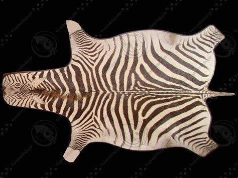 zebra skin color texture other zebra skin rug