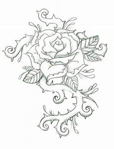 Drawings Of Roses With Thorns Pictures to Pin on Pinterest ...
