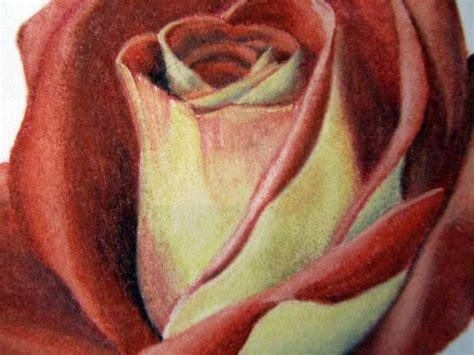 wie zeichnet man eine rose anleitung rose einfach