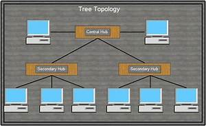 What Is Network Topology  Or Network Topologies