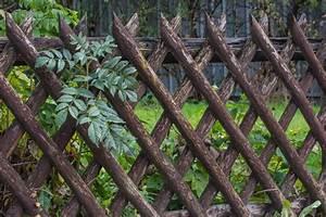 Gartenzaun Aus Metall : gartenzaun ideen 22 inspirierende ideen aus holz metall und stein ~ Orissabook.com Haus und Dekorationen