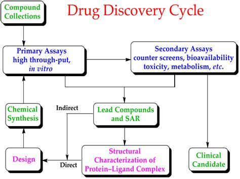filedrug discovery cyclesvg wikimedia commons