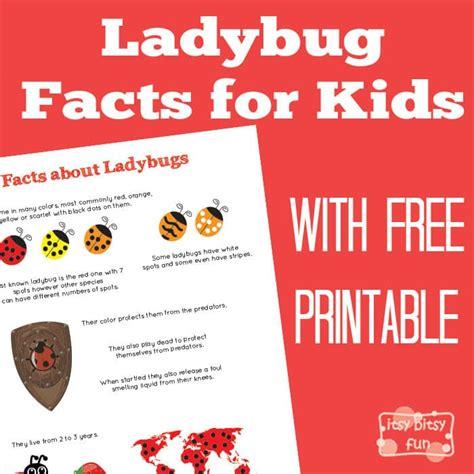 ladybug printables for itsy bitsy 651 | 367649515