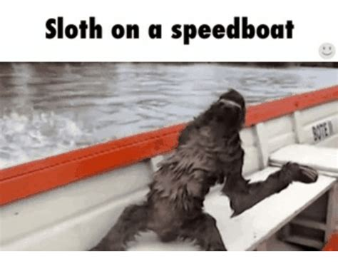 Speed Boat Fails by 25 Best Memes About Speed Boat Fails Speed Boat Fails Memes