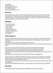 1 bank internal auditor resume templates try them now With internal resume format