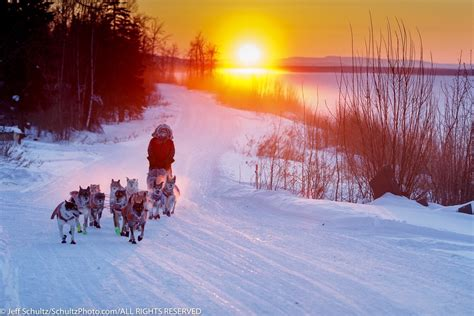 iditarod jeff schultz photography