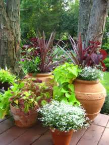 container plants ideas best tips to container gardening ideas front yard landscaping ideas