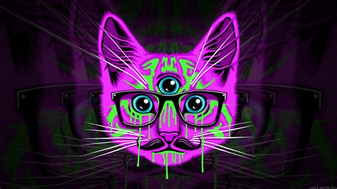 trippy cat wallpapers  images