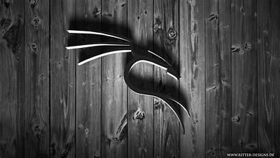 Kali Linux Nethunter Desktop Wallpapers Backgrounds Mobile