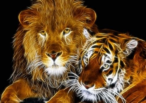 amazing fractal light lion  tiger  christopher mccabe redbubble