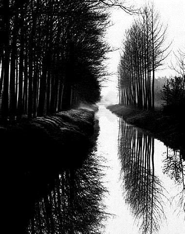 edward weston prints  sale holland canal  brett