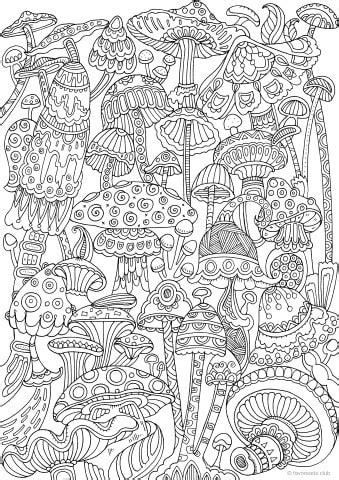 mushrooms printable adult coloring pages  favoreads