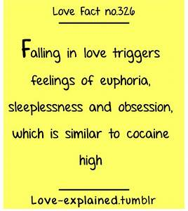 Love facts (couple,cute,lol,relationship,relationships ...