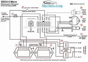 Wiring Diagrams For Secu-3 Units  Examples