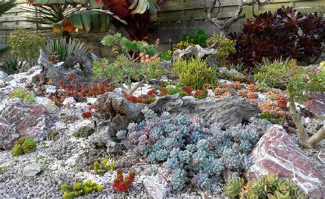 Jardin De Bretagne by Jardin De Succulentes En Plein Air En Bretagne