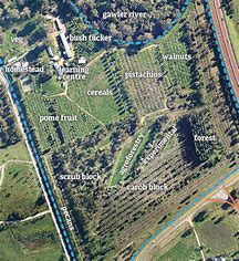 Best Farm Layout - ideas and images on Bing | Find what you ... Homestead Farm Layout Plan on 5 acre homestead layout, homestead barn layout, backyard homestead layout, homestead farms and gardens, homestead garden layout, small homestead layout, mini farming garden layout, homestead water filtration, 1 4 acre homestead layout, best homestead layout, homestead golf course layout,