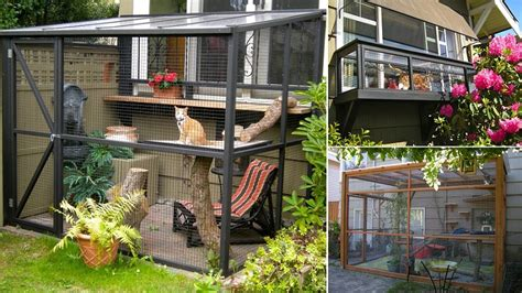 catio design ideas catio spaces keep your cat safe and happy icreatived 2021