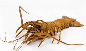 Artist ryousuke ohtake carves incredibly realistic lobster for Artist ryousuke ohtake carves incredibly realistic lobster from boxwood