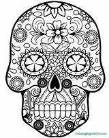 Skull Coloring Sugar Pages sketch template