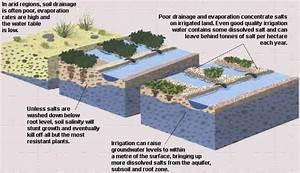 Modernized Irrigation