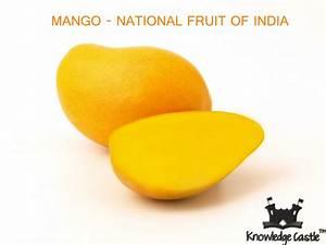 Mango - the national fruit of India. | India! | Pinterest ...