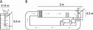 Design Of Experimental Flumes  A  Closed Recirculation