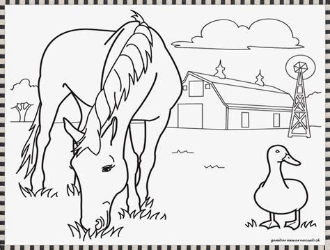 gambar kuda untuk mewarnai coloringpages asia