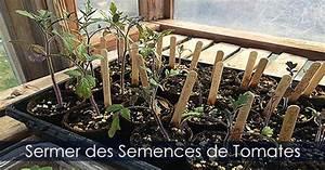 Planter Des Graines De Tomates : graines et semis planter des semences guide photos ~ Dailycaller-alerts.com Idées de Décoration
