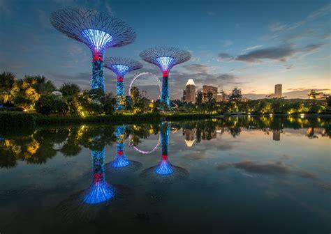 Wallpaper Trees Landscape  Ee  Lights Ee   City Night
