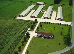News Release :: Delmarva Poultry Industry Inc.