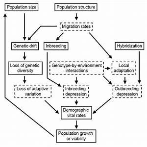 Schematic Diagram Of Interacting Factors To Consider When