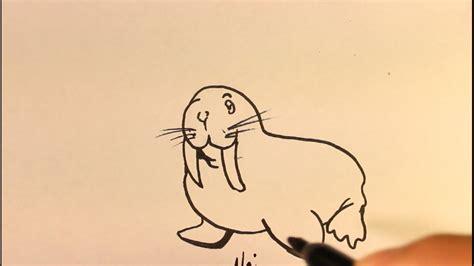 draw cartoon walrus easy step  step drawing