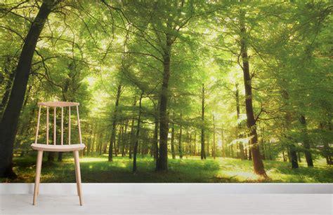 Green Oak Forest Wallpaper Wall Mural Muralswallpapercouk