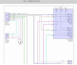 3cd04 Radio Wiring Diagram 2005 Suzuki